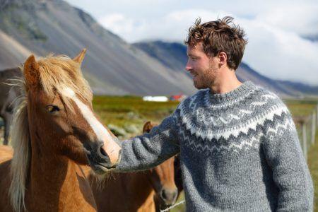 Icelandic horses – man petting horse on Iceland