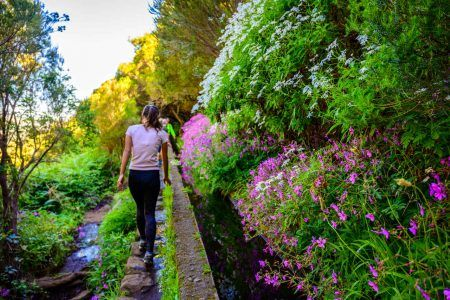 Hiking Levada trail 25 Fontes in Laurel forest – Path to the famous Twenty-Five Fountains in beautiful landscape scenery – Madeira Island, Portugal
